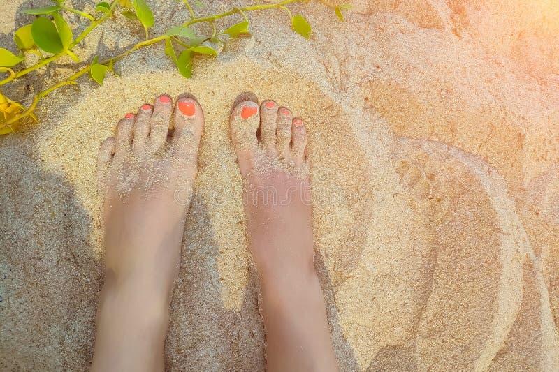 De voeten van de vrouw op het zandige strand met koraal rode manikure Hoogste mening van twee benen stock foto's