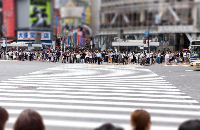 De voetgangers wachten in Shibuya Kruisend, Tokyo, Japan stock afbeelding