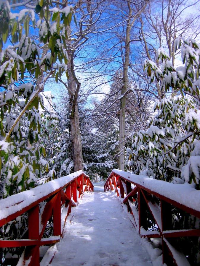 De Voetgangersbrug van het Chautauquainstituut in de Winter stock foto