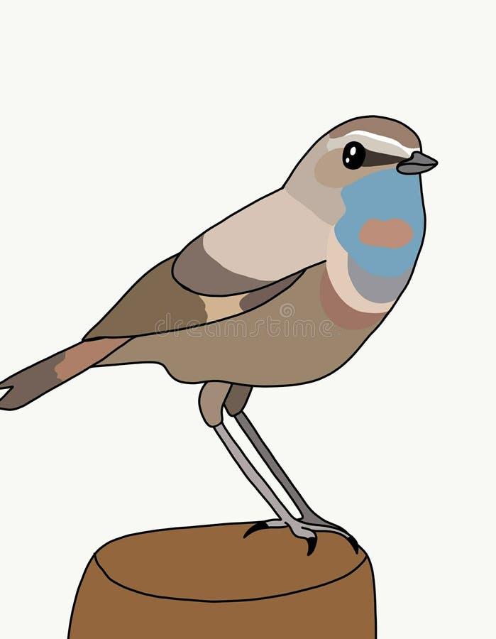 De vogel is de Blauwborst vector illustratie
