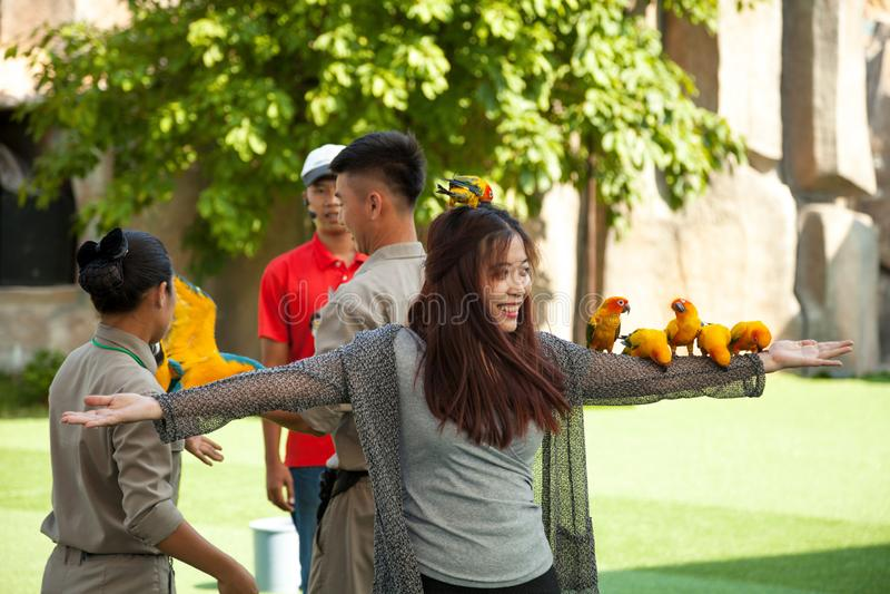 De vogel toont bij het pretpark van Vinpearl royalty-vrije stock afbeeldingen