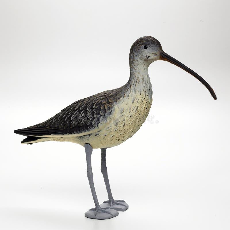 De vogel van de valstrik stock afbeelding