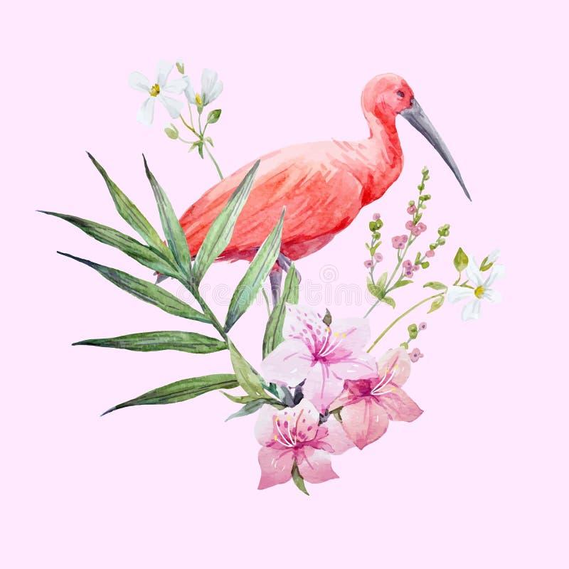De vogel vectorsamenstelling van de waterverfibis royalty-vrije illustratie