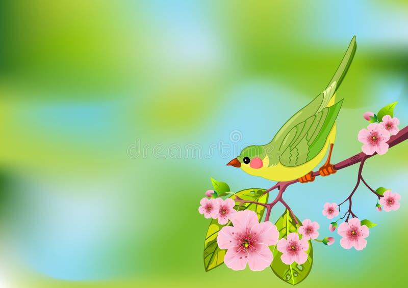 De vogelachtergrond van de lente vector illustratie