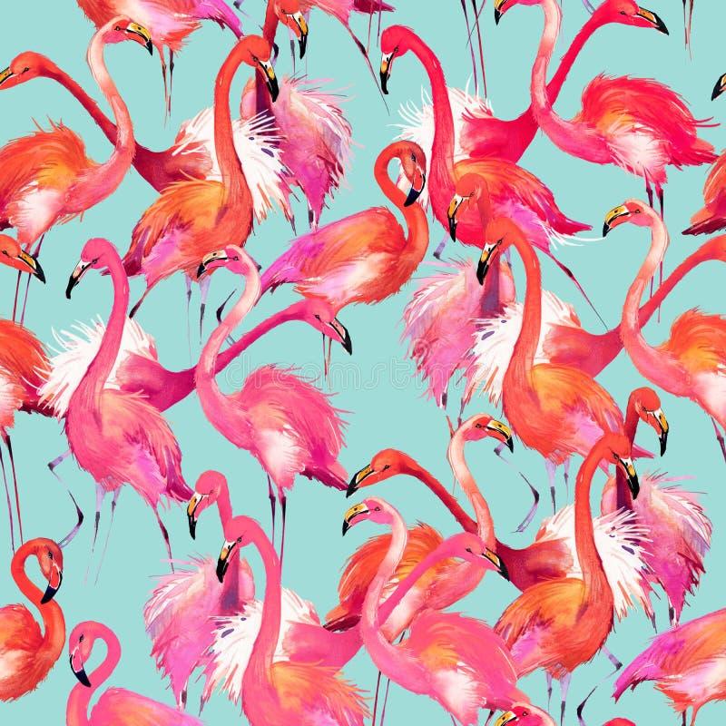 De vogelillustratie van de waterverfflamingo royalty-vrije illustratie