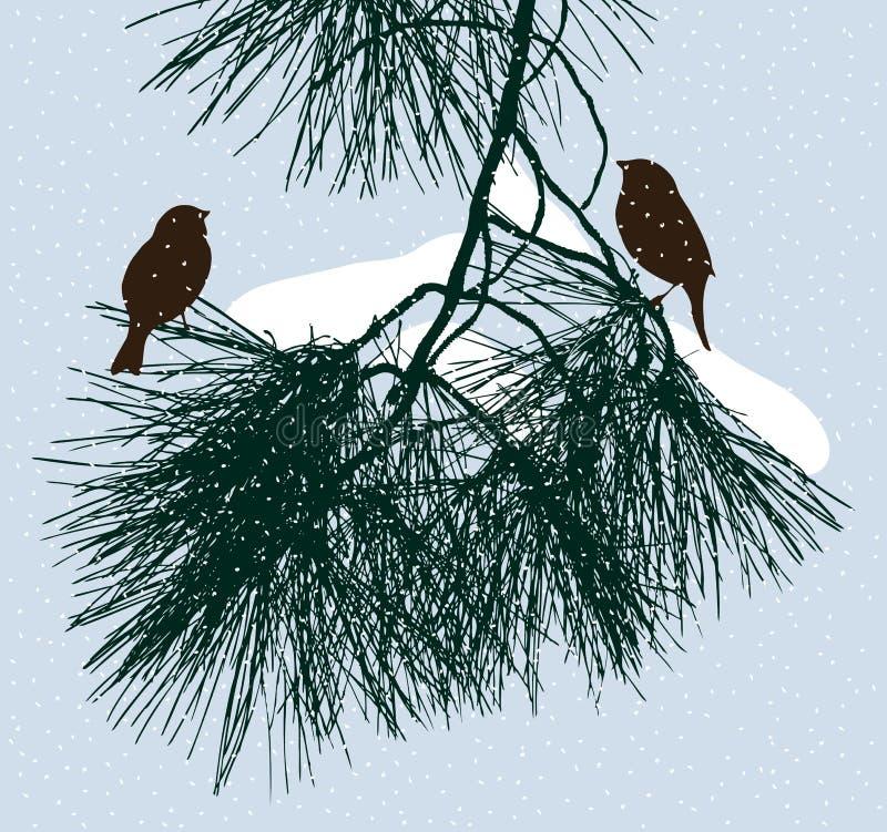 De vogels zitten op een pijnboomtak in de winterdag royalty-vrije illustratie