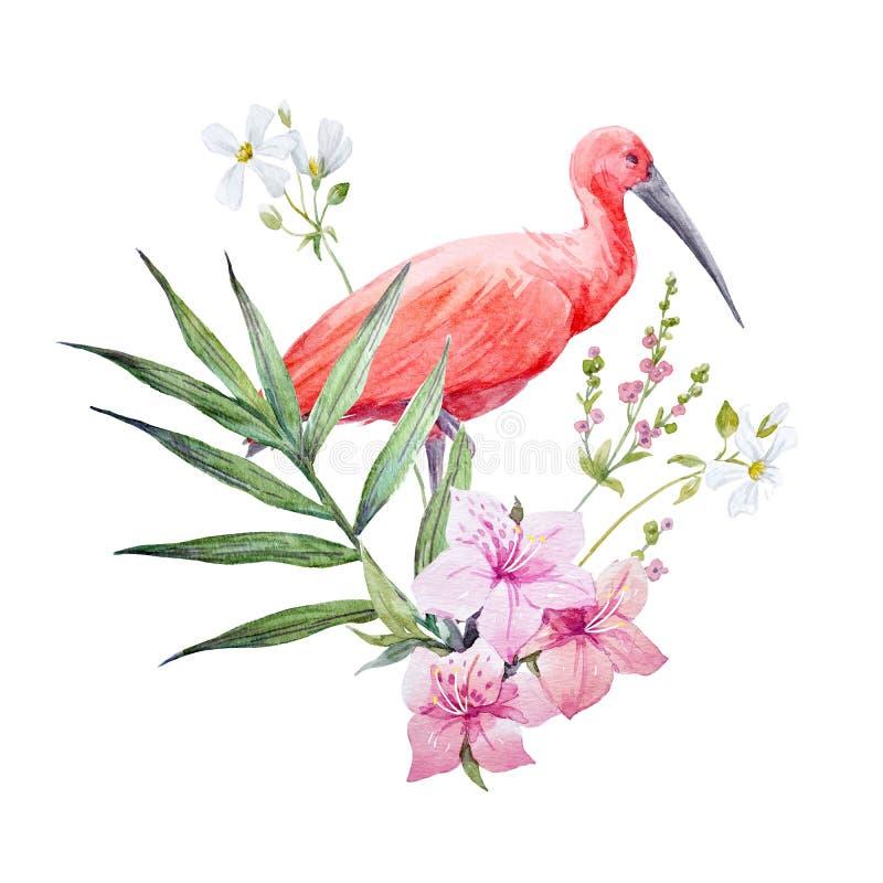 De vogelsamenstelling van de waterverfibis vector illustratie