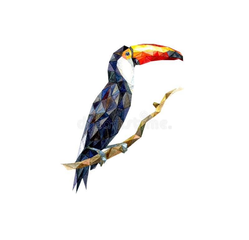 De vogelssamenvatting van de waterverftoekan stock afbeeldingen