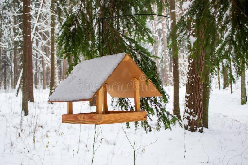 De vogelvoeder op de tak at onder sneeuw op de winter bosachtergrond stock afbeelding