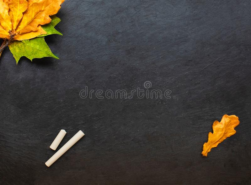 De volta ao fundo da escola (EPS+JPG) Quadro preto com partes de gizes e de folhas do yelllow do outono Configura??o lisa Copie o fotografia de stock