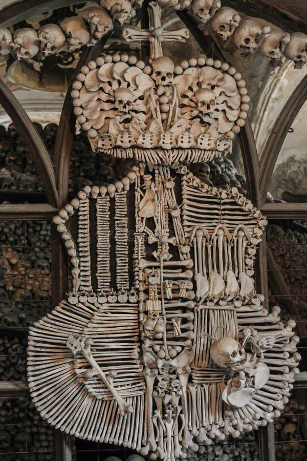 De vorm van de beenderen royalty-vrije stock afbeelding