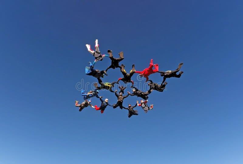 De vorming van de Skydivingsgroep stock afbeeldingen