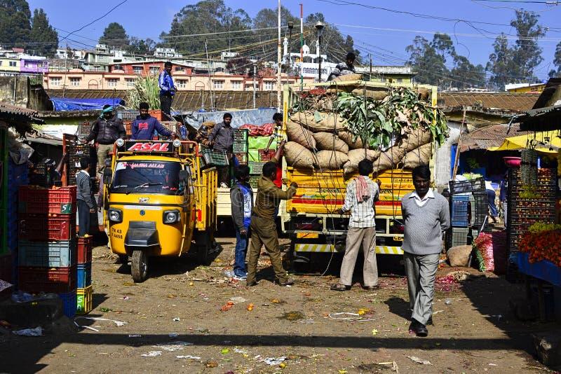 De vrachtwagen van de Menworkerslading met zware zakken met groenten royalty-vrije stock foto's