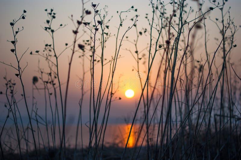 De vreedzame rustige scène van de ochtend rode zonsopgang royalty-vrije stock foto