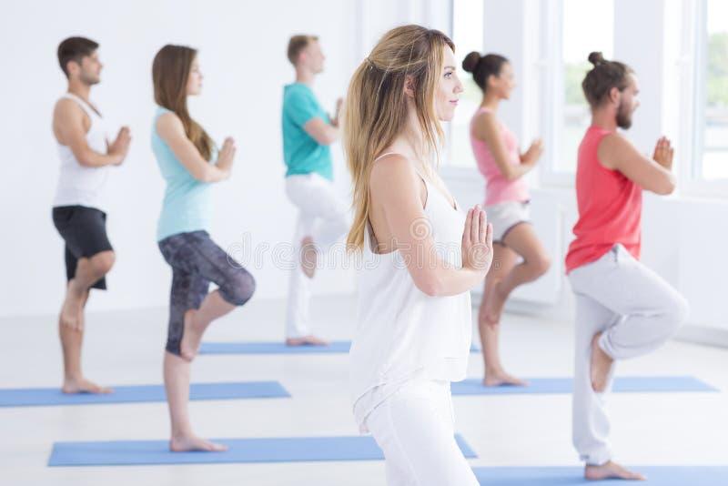 De vrienden concentreren zich op yogaklassen stock afbeeldingen