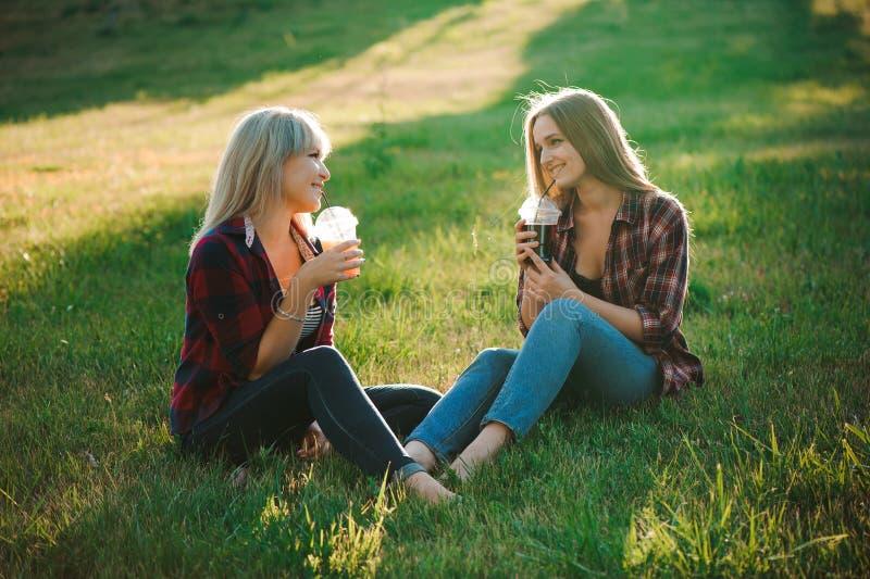 De vrienden hebben pret in het park en de drank smoothies bij een picknick stock foto