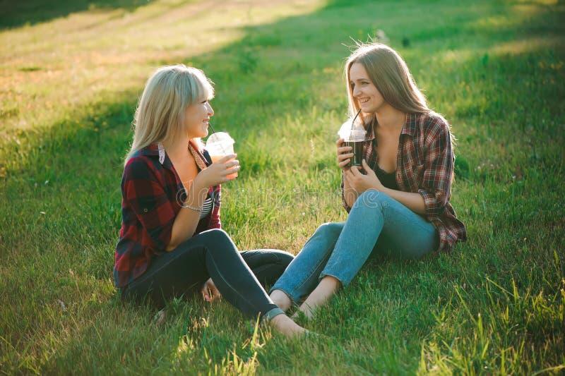 De vrienden hebben pret in het park en de drank smoothies bij een picknick stock fotografie