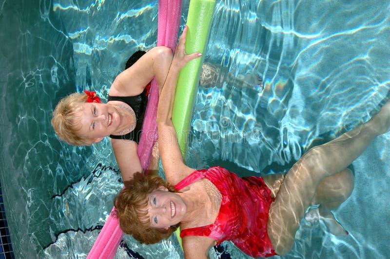 De vrienden zwembad van oudsten royalty-vrije stock fotografie