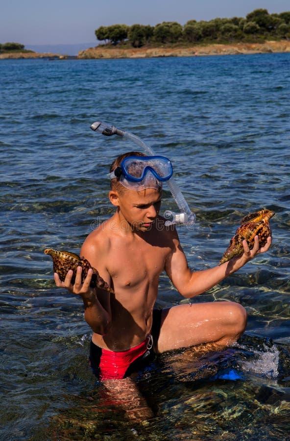 De vrije duiker vindt shells in het Egeïsche duidelijke overzees royalty-vrije stock afbeelding