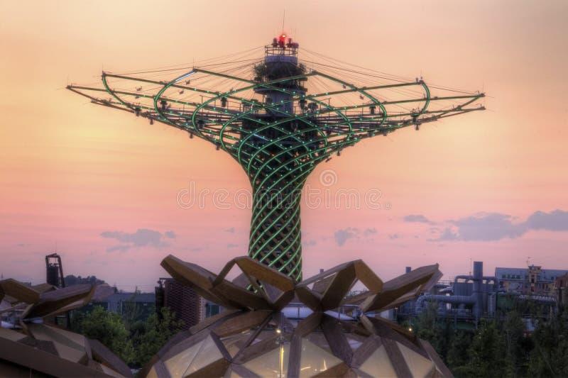 De vroege foto van avondhdr van de Boom van het leven in Milaan EXPO 2015 stock fotografie