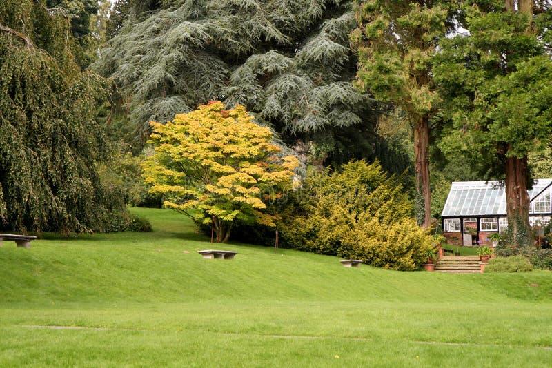De vroege Herfst in een Engelse Tuin van het Land stock fotografie