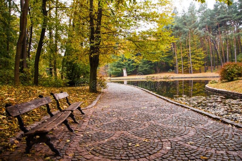 De vroege herfst in park stock afbeeldingen