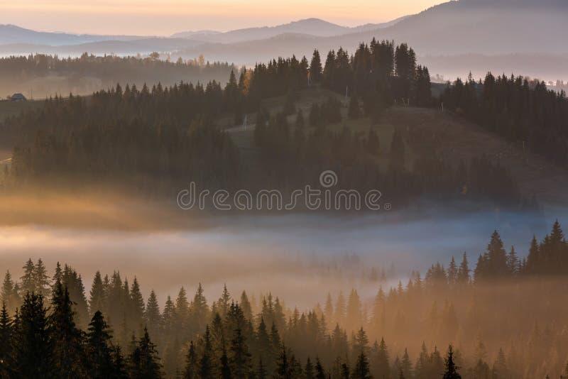 De vroege Karpatische berg van de ochtend nevelige herfst, de Oekraïne royalty-vrije stock foto's