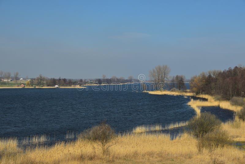 De vroege lente bij het meer stock afbeelding