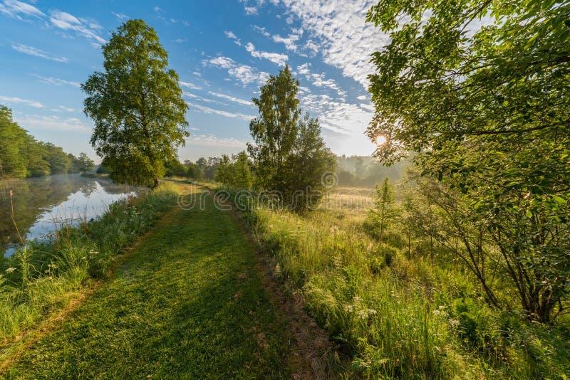 De vroege zomerochtend bij een sleep dichtbij een kanaal stock fotografie