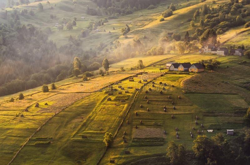 De vroege zomerochtend in een klein Karpatisch dorp royalty-vrije stock afbeelding