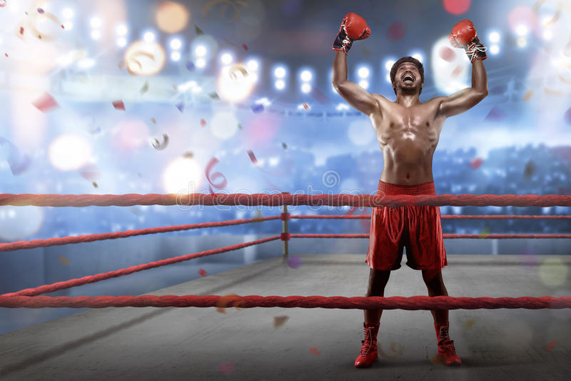De vrolijke Aziatische jonge bokser viert zijn het winnen stock afbeelding