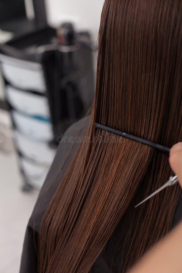 De vrolijke jonge vrouw krijgt haar haarbesnoeiing stock afbeelding