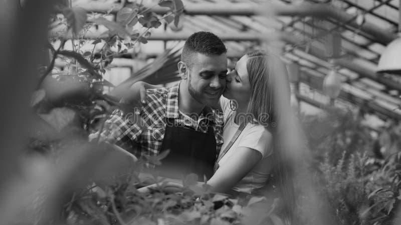 De vrolijke vrouw omhelst en kust echtgenoot het water geven bloemen met tuinpot Gelukkig jong bloemistpaar in schort die binnen  royalty-vrije stock foto's