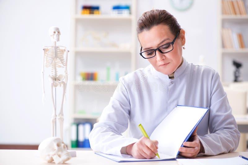 De vrouw arts die menselijk skelet bestuderen royalty-vrije stock foto