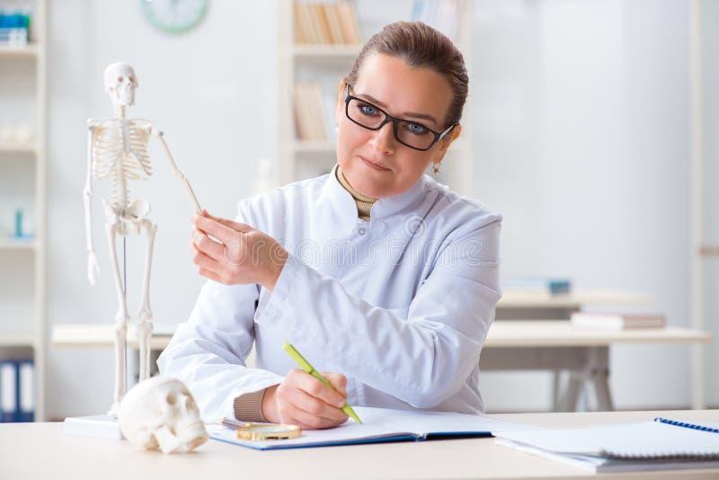 De vrouw arts die menselijk skelet bestuderen stock afbeeldingen