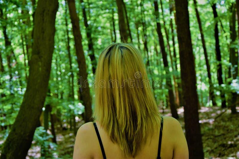 De vrouw bevindt zich met haar terug in het bos royalty-vrije stock foto's