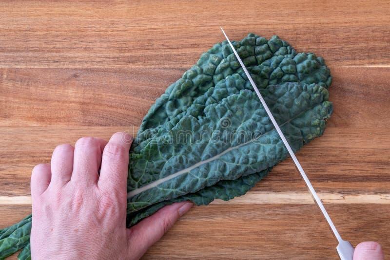 De vrouw die een bos van donkergroene, gekreukte, Lacinato-Boerenkool snijden verlaat, op een houten scherpe raad, handen en chef royalty-vrije stock afbeelding