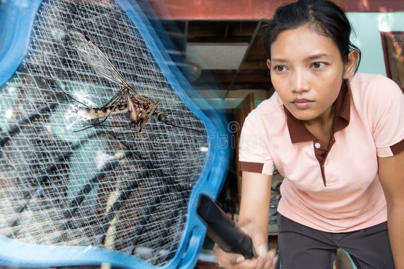 De vrouw doodt vliegende mug stock afbeeldingen