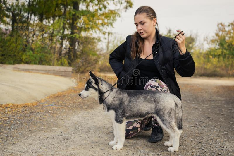 De vrouw geeft een bevel aan haar Siberische Schor van het hondpuppy in het de herfstpark Hond opleiding stock afbeelding