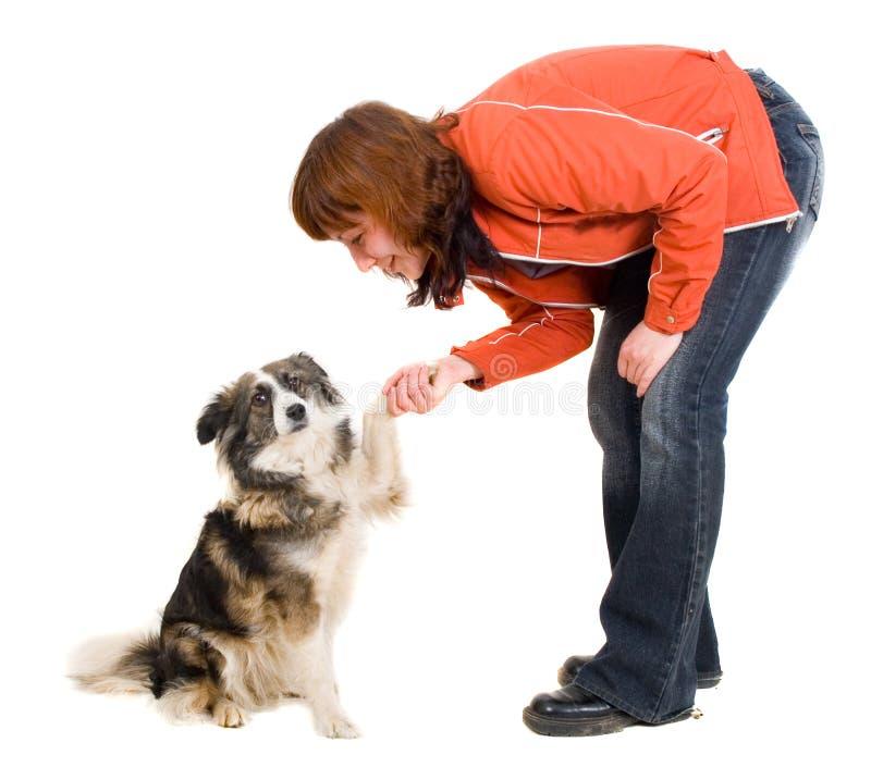 De vrouw is hond opleiding royalty-vrije stock foto