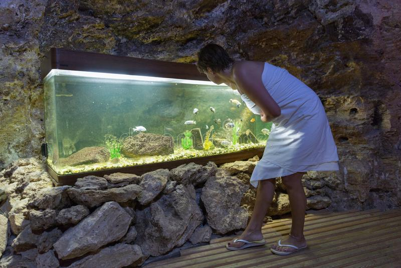 De vrouw kijkt in aquarium met colourfullvissen in hol royalty-vrije stock afbeelding