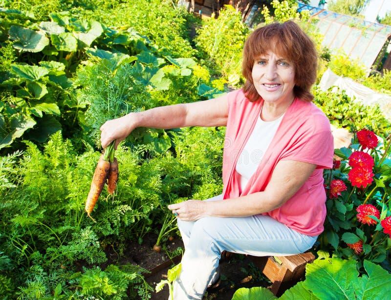 De vrouw kweekt oogst in de tuin stock foto's