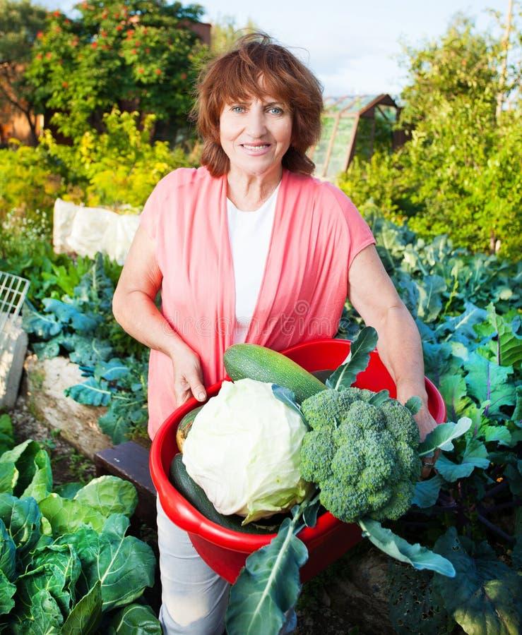De vrouw kweekt oogst in de tuin stock foto