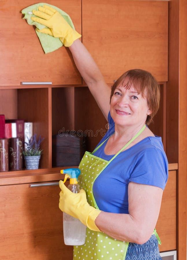 De vrouw maakt het huis schoon stock fotografie
