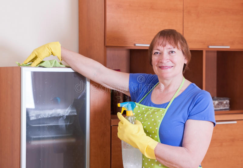 De vrouw maakt het huis schoon stock foto