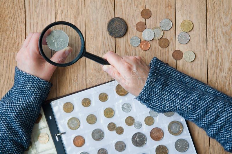 De vrouw-numismaticus bekijkt muntstukken van een muntstukalbum door een magnif stock afbeelding