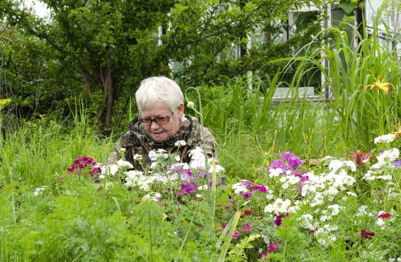 De vrouw onderzoekt bloemen royalty-vrije stock fotografie