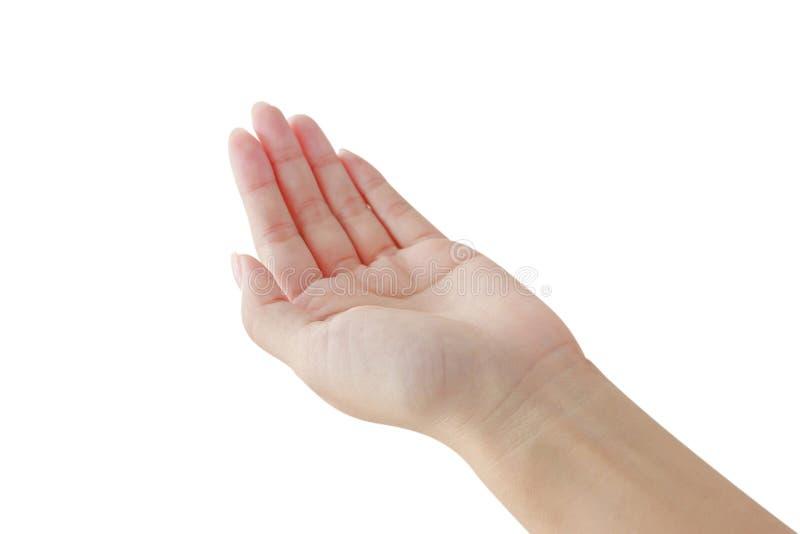 De vrouw opent de palm van de geïsoleerde hand stock foto