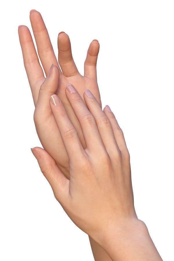 De vrouw past huidzorg op handen toe stock foto