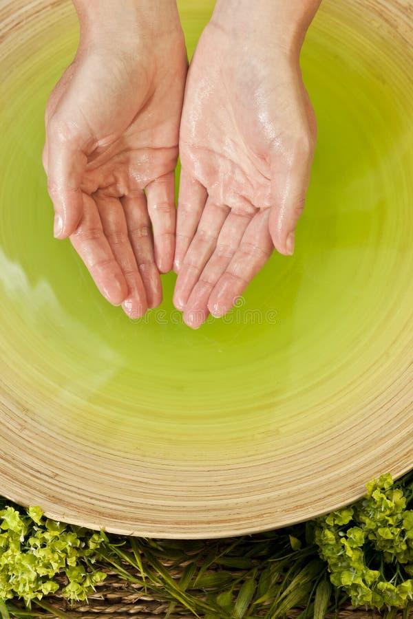 De vrouw \ \ \ 's dient Groene Vloeistof in Health Spa in royalty-vrije stock afbeeldingen